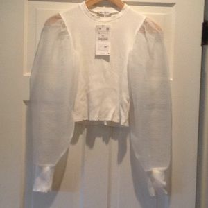 White cropped top with organza sleeves.